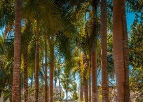 mauricius-hotel-shandrani-beachcomber-310.jpg